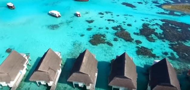 المالديف جزر المالديف سياحة صور جزر المالديف منتجعات المالديف اسعار فنادق جزر المالديف افضل وقت للسفر للمالديف مالديف اين تقع جزر المالديف فنادق المالديف
